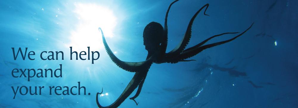 ClelandMarketing_WebBanners_Octopus
